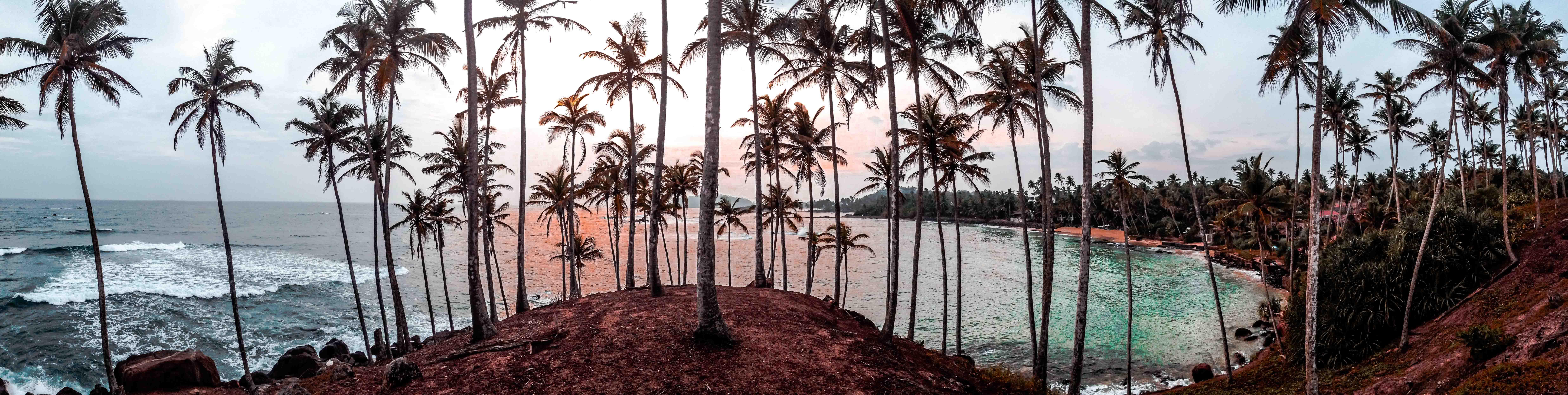 Sri Lanka View