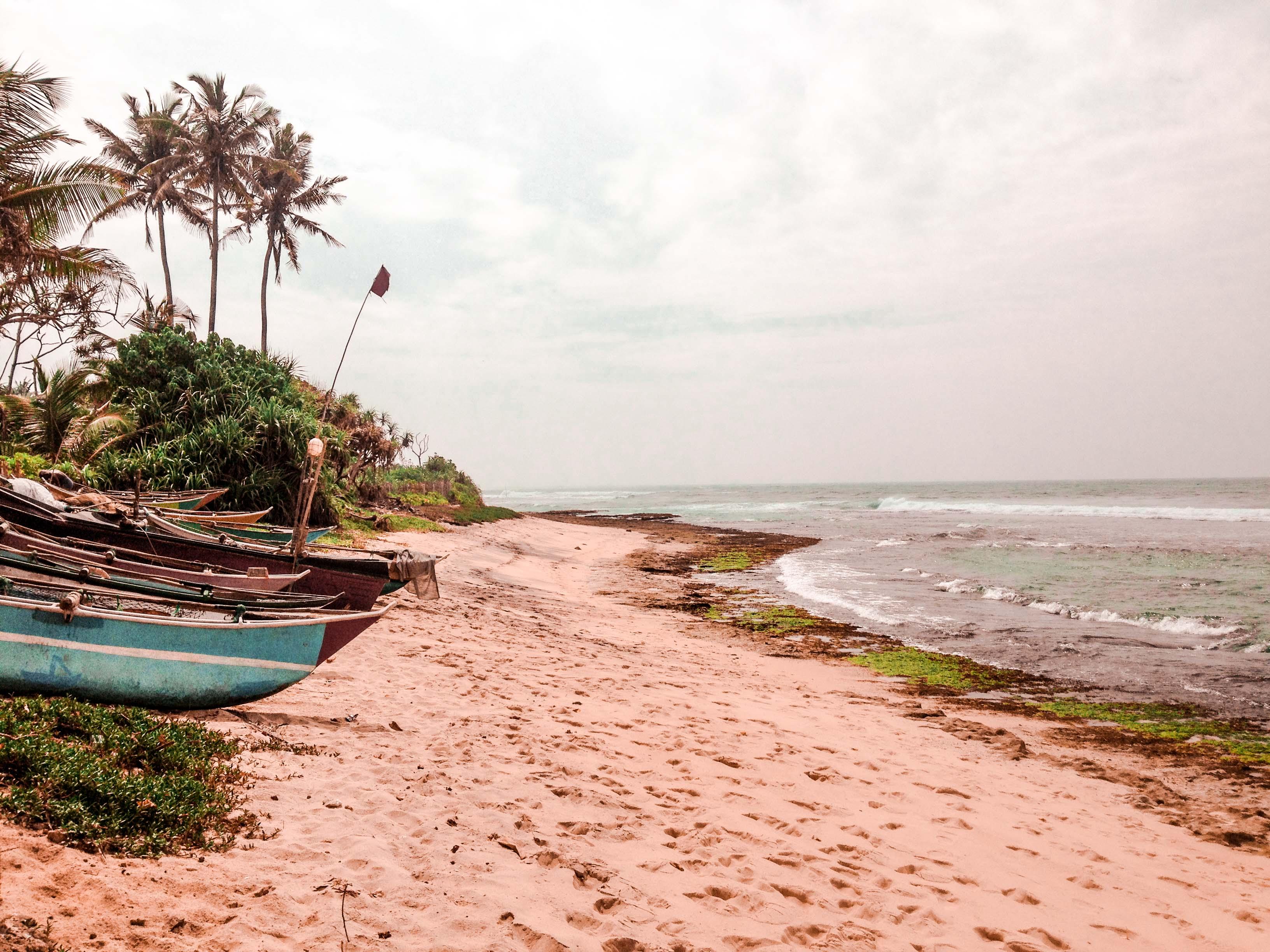Sri Lanka Reisezeit , Anreise & Visum - Top Sri Lanka Tipps